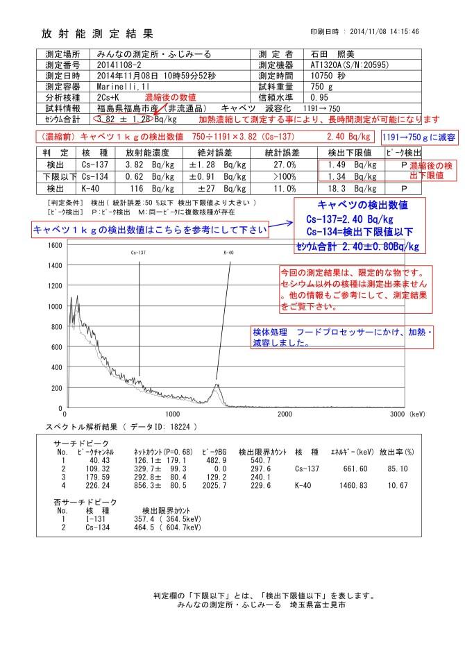 18224-1 福島県福島市 キャベツ