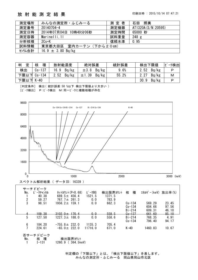 16339  東京都大田区 室内カーテン(下から20㎝)
