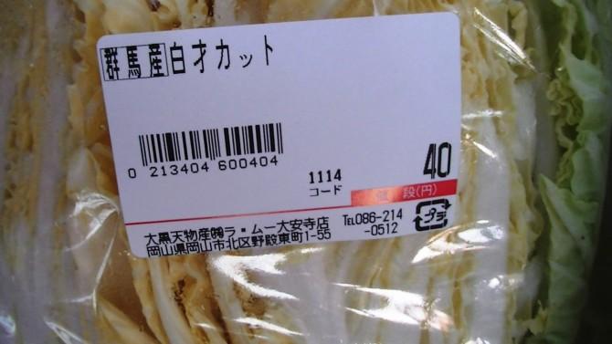 PIC_0232 白菜4