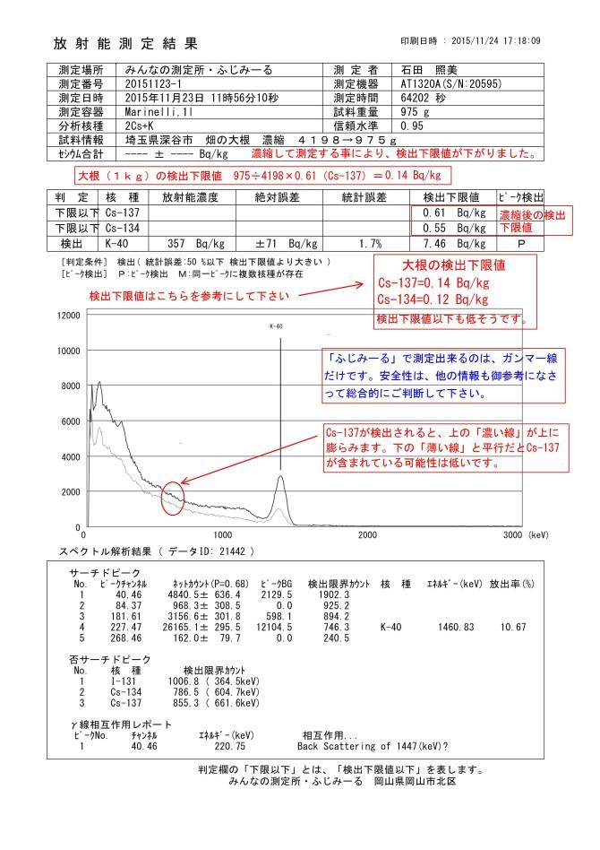 21442-1  埼玉県深谷市 畑の大根 濃縮 4198→975g