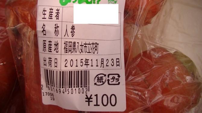 PIC_人参 福岡県八女市0039