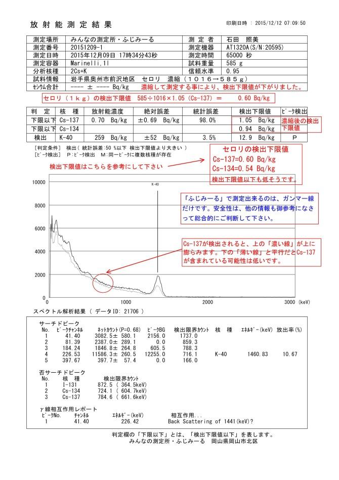21706-1  岩手県奥州市前沢地区 セロリ 濃縮(1016→585g)